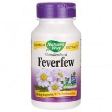 Feverfew (Matrem) NW, 60