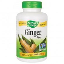 Ginger (Ingefær) NW