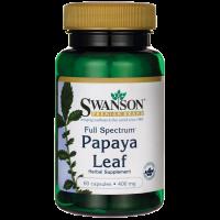 Papaya Leaf