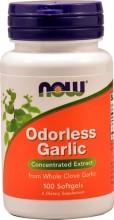 Odorless Garlic  Hvitløk