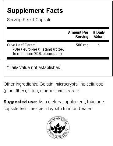 Olive Leaf (Olivenblad) Superior innhold