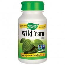 Wild Yam NW 100kpsl