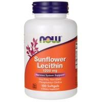 Sunflower Lecithin Now
