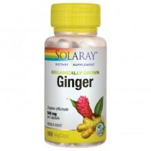 Ginger Root - Ingefærrot