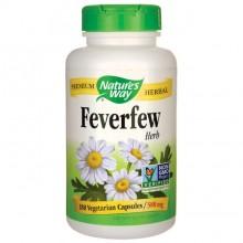 Feverfew (Matrem)180 NW
