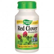 Red Clover (Rødkløver) Nw