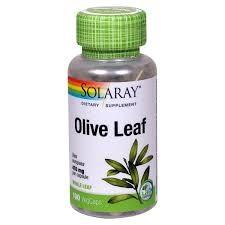 Olive Leaf - Olivenblad