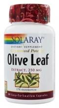 Olive Leaf - Olivenbladekstrakt