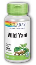 Wild Yam/Yamsrot
