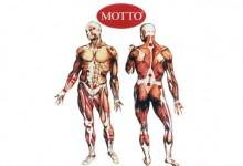 Motto Muskel plaster